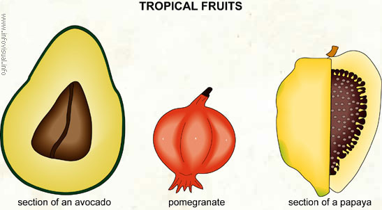 Tropical fruits (2)
